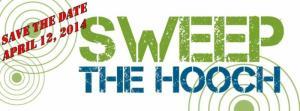 sweep hooch flyer